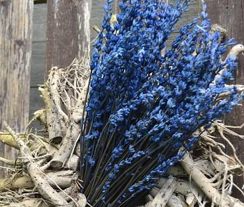 SUŠENÁ LEVANDULE, suché a sušené květiny na aranžování