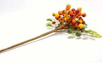 Bobule červenooranžové, podzimní dekorace