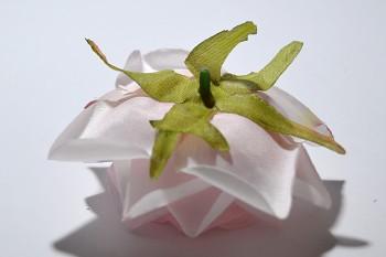 mělá květina Růže Tamara růžová