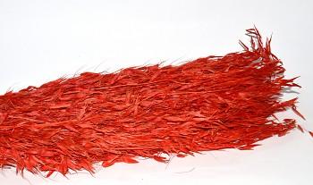 oves červený