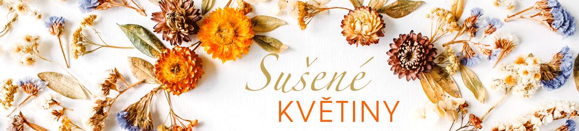 Sušené květiny, trávy, listy