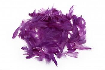 Barevné peří tmavě fialové
