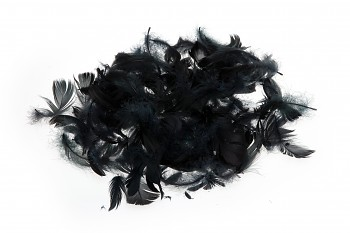 Barevné peří černé