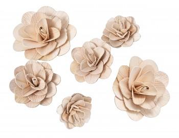 Sušené květiny Růže z dřevěné dýhy
