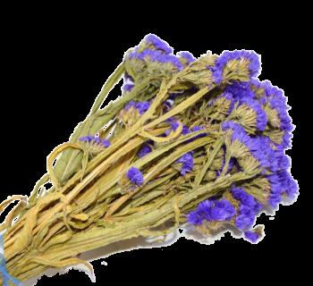 Sušené květiny  STATICE SINUATA FIALOVÁ
