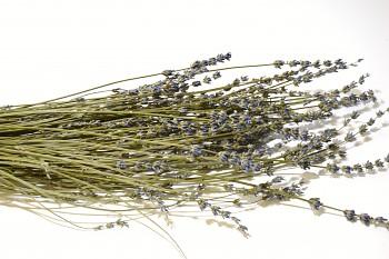 SVAZEK SUŠENÁ LEVANDULE ANGLICKÁ, sušené květy