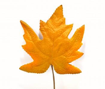 Javorový list hnědý, podzimní dekorace
