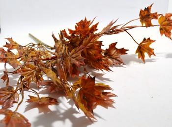 Javorové listí, podzimní dekorace