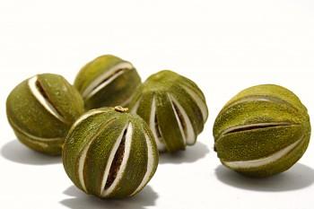 Sušené plody LIMETKA, suché plody na aranžování