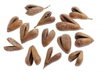 Sušené plody MIKE FRUIT, suché plody na aranžování