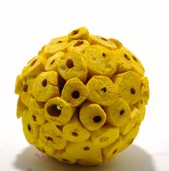 Sušené květiny SOLA TIP BALL ŽLUTÁ