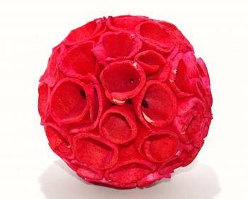 Sušené květiny SOLA TIP BALL ČERVENÁ