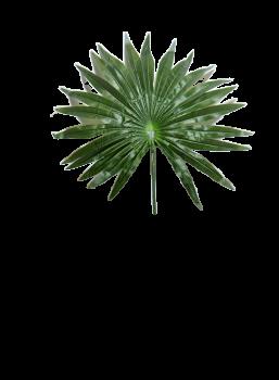 Umělé květiny PALMA