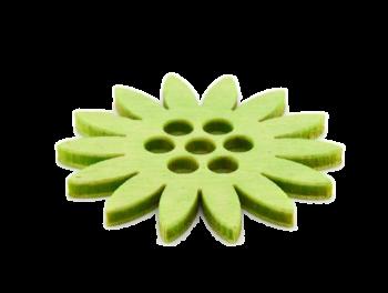 Květina ZELENÁ KOPRETINA