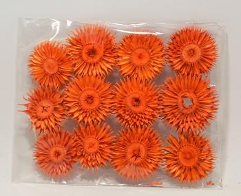 Sušené květiny SLAMĚNKA LISOVANÁ ORANŽOVÁ
