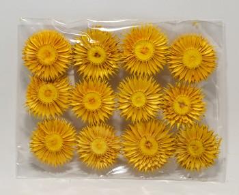 Sušené květiny SLAMĚNKA LISOVANÁ ŽLUTÁ