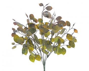 Podzimní dekorace MĚSÍČNICE ZELENÁ