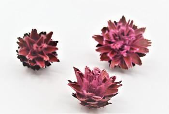 Sušené květiny PLUMOSUM RŮŽOVÁ