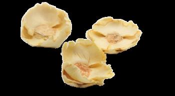 Sušené plody COCO FLOWER BĚLENÝ