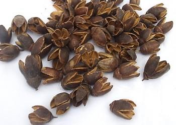 Suché plody BAKULI PŘÍRODNÍ, sušené plody na aranžování